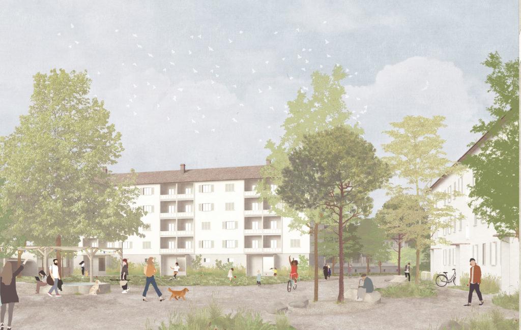 Siedlung «Im Rheinacker» – Umgebungsaufwertung
