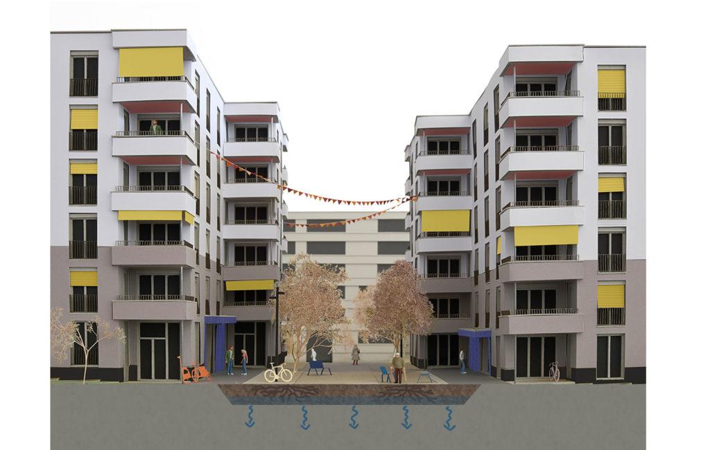 Des fosses à impluvium pour la Pièce urbaine C